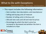 what to do with exceptions31
