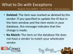 what to do with exceptions33