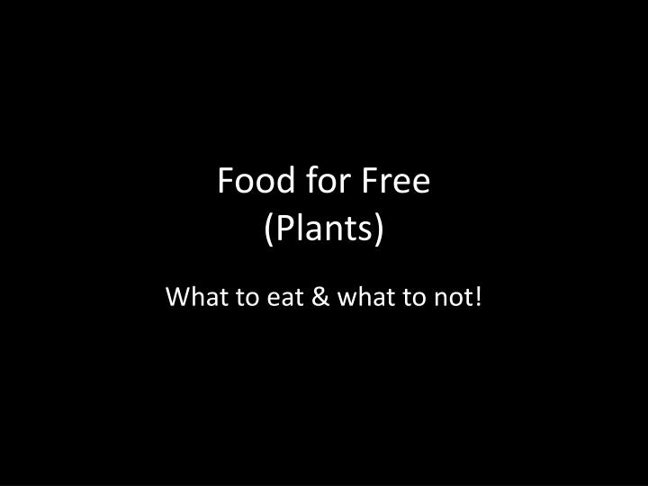 food for free plants n.