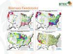 biomass feedstocks