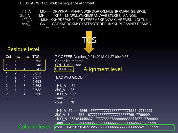 CLUSTAL W (1.83) multiple sequence alignment