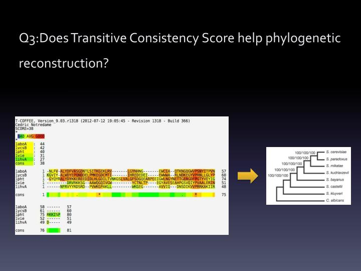Q3:Does Transitive Consistency Score help phylogenetic reconstruction?