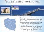 platan digitex where s this