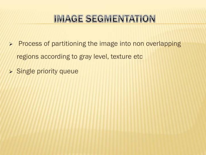 Process of partitioning the image into non overlapping regions according to gray level, texture