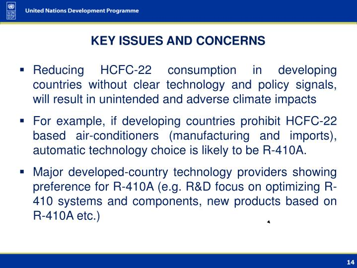 KEY ISSUES AND CONCERNS