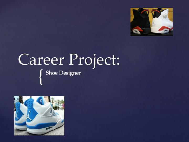 career project n.