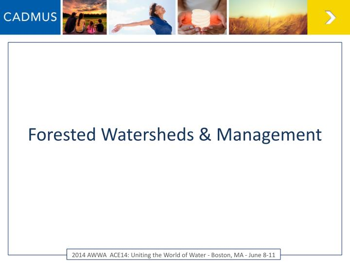 Forested Watersheds & Management