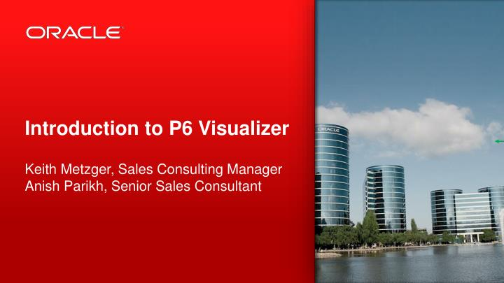 introduction to p6 visualizer n.
