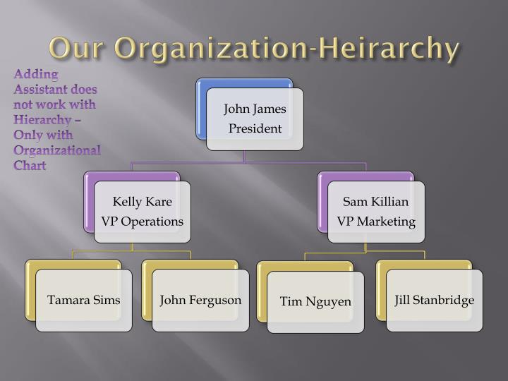 Our Organization-