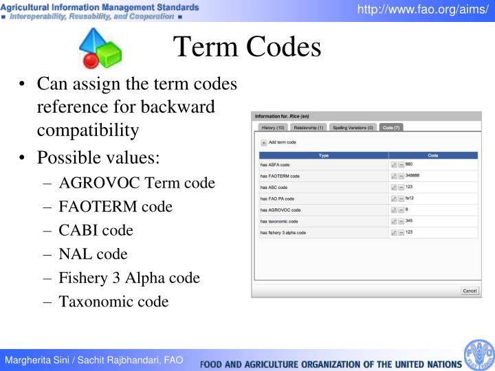 Term Codes