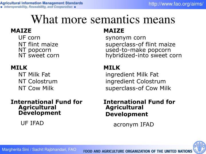 What more semantics means