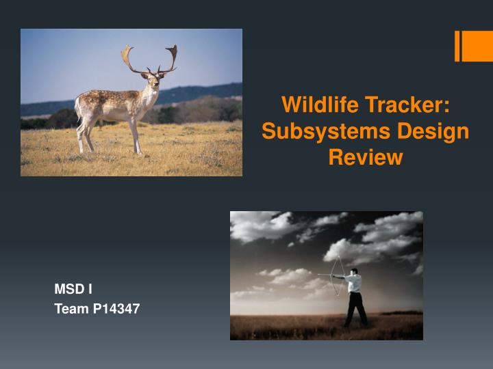 wildlife tracker subsystems design review n.