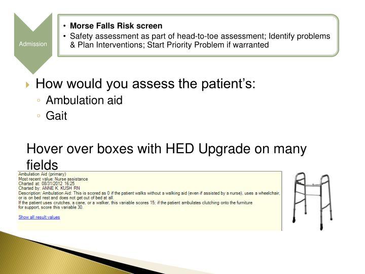 Morse Falls Risk screen