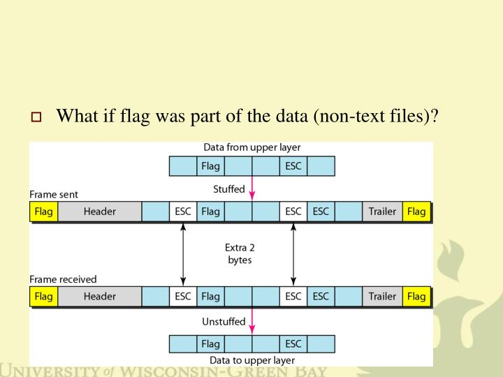 What if flag was part of the data (non-text files)?