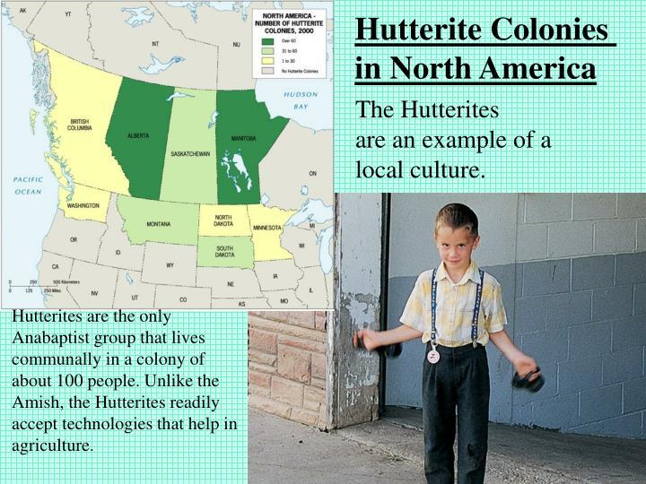 Hutterite