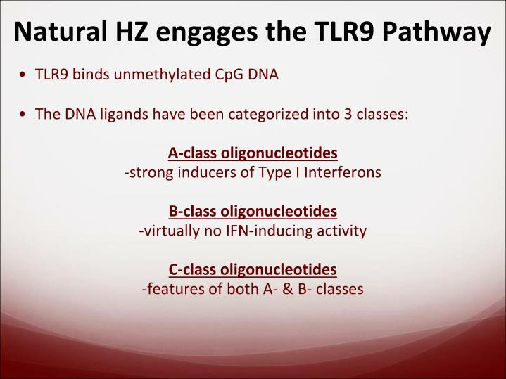 Natural HZ engages the TLR9 Pathway