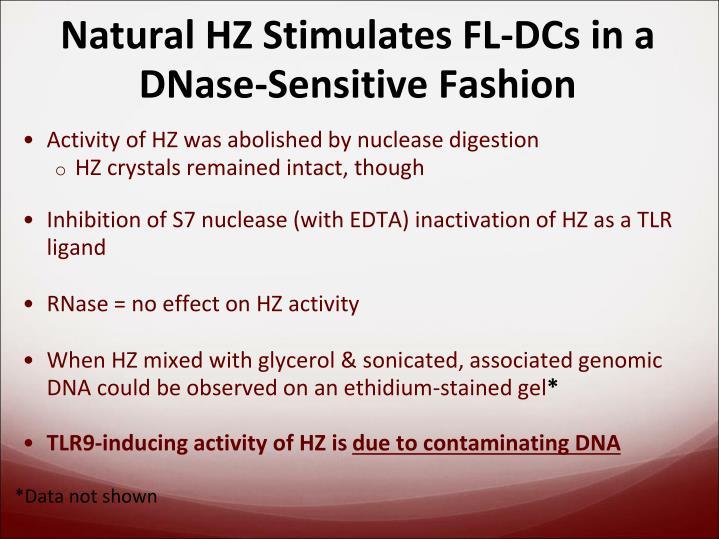 Natural HZ Stimulates FL-DCs in a