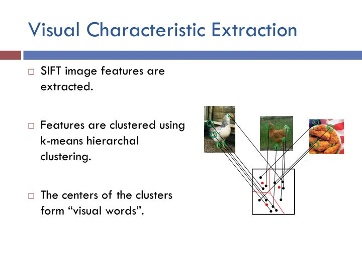 Visual Characteristic Extraction