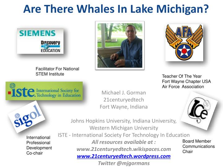 Are There Whales In Lake Michigan?