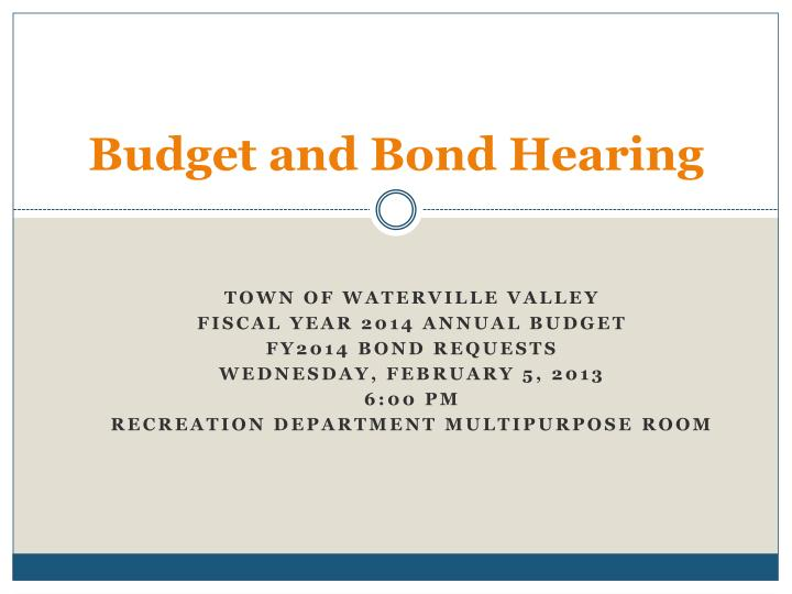 budget and bond hearing n.