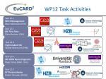 wp12 task activities