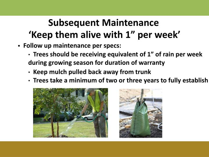 Subsequent Maintenance