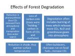 effects of forest degradation