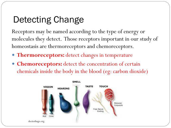 Detecting Change