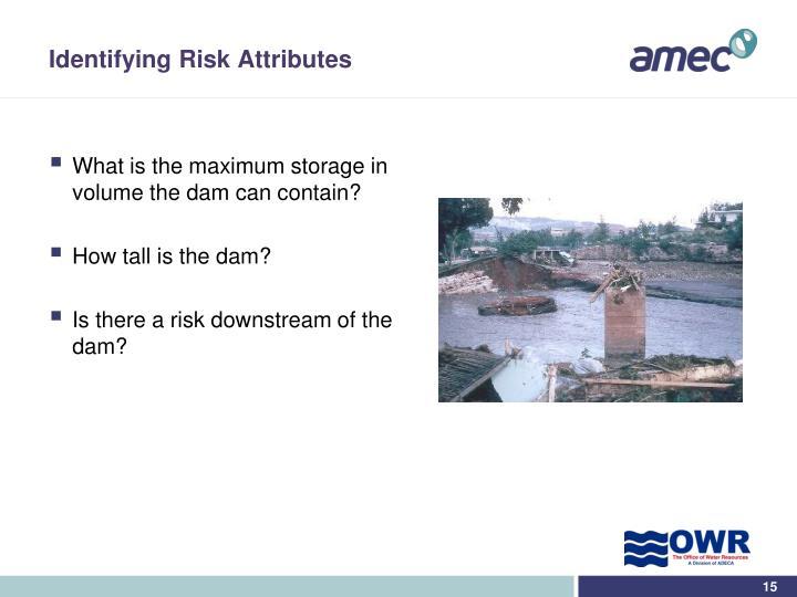 Identifying Risk Attributes