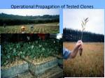 operational propagation of tested clones