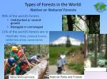 types of forests in the world native or natural forests