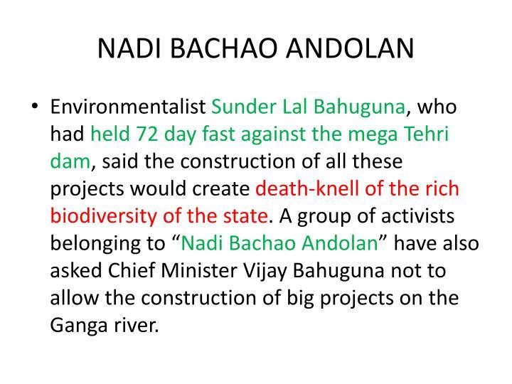 NADI BACHAO ANDOLAN