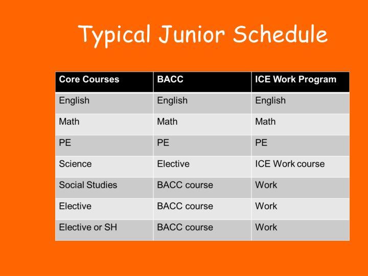 Typical Junior Schedule