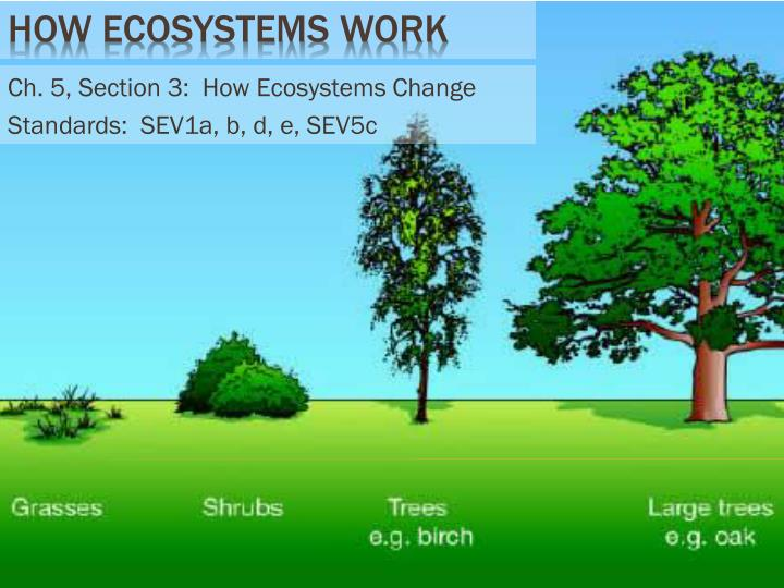 ch 5 section 3 how ecosystems change standards sev1a b d e sev5c n.