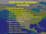 ocb carbon synthesis workshop1