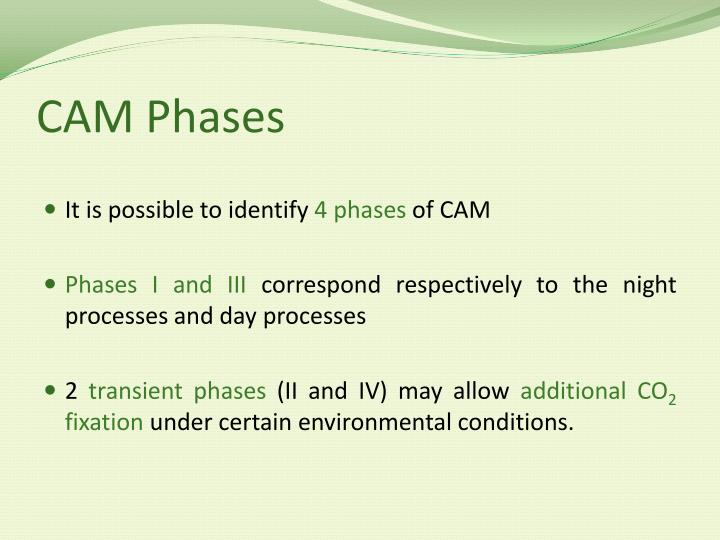 CAM Phases