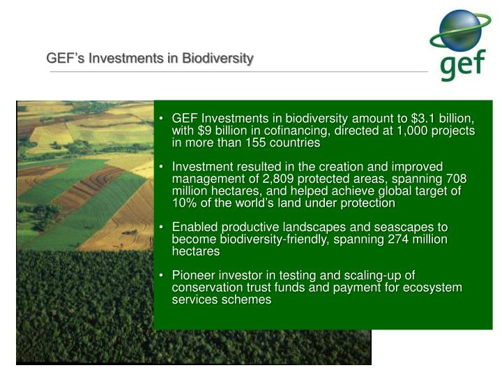 GEF Investments
