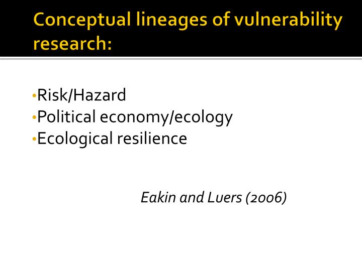 Conceptual lineages of vulnerability research