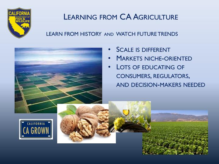 Learning from CA Agriculture