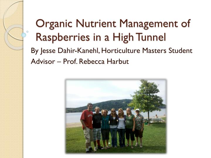 organic nutrient management of raspberries in a high tunnel n.