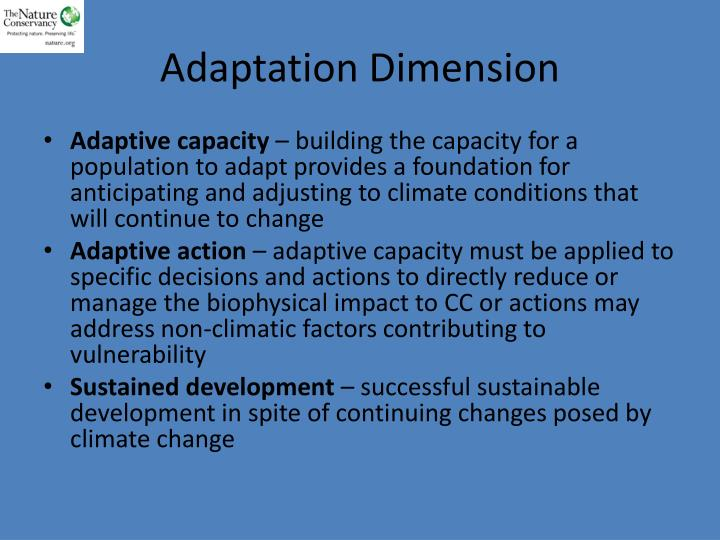 Adaptation Dimension