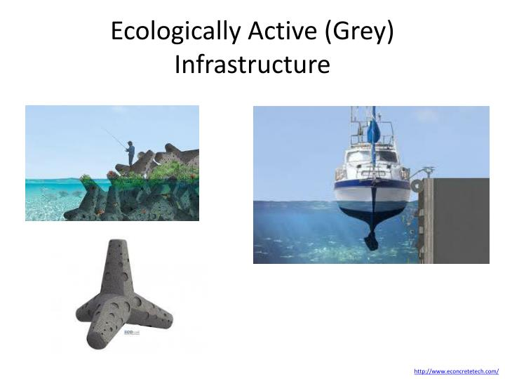 Ecologically Active (Grey) Infrastructure