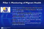 pillar 1 monitoring of migrant health