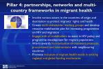 pillar 4 partnerships networks and multi country frameworks in migrant health
