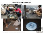 the case of cameroon