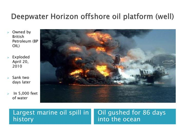bp deepwater horizon case analysis Free essay: rafique sheikh mgmt 518: legal & ethical env of business bp's ethical conduct concerning the deep horizon blowout background: the deepwater.