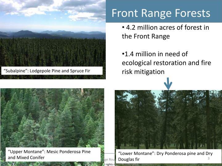 Front range forests
