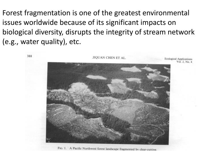 Forest fragmentation is one