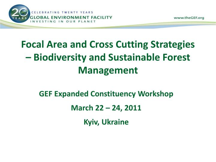 Focal area and cross cutting strategies biodiversity and sustainable forest management