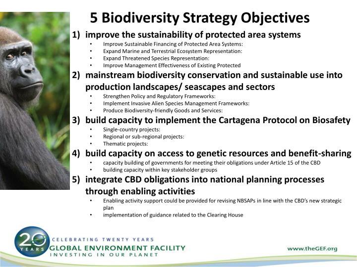 5 Biodiversity Strategy Objectives